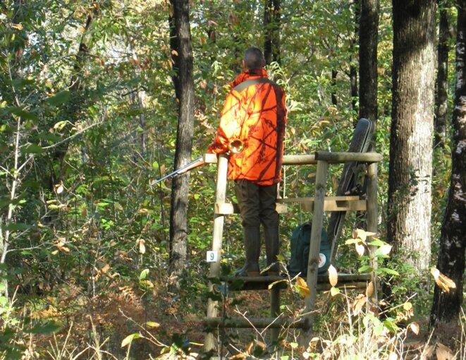 Le milieu de la chasse se voit octroyer régulièrement, et encore ces jours-ci, des subventions conséquentes par des responsables politiques. Désintéressés. © Reproduction interdite