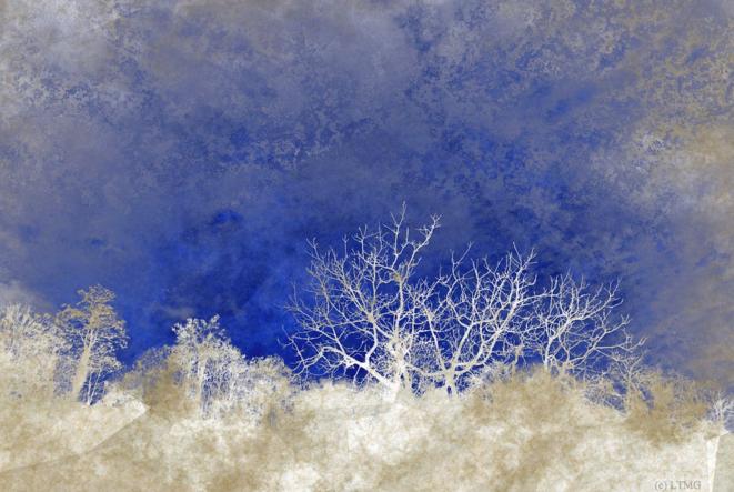 Frozen © Luna TMG