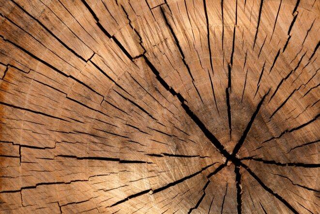 lumber-84678-1920