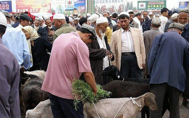 Ouïghours dans un marché de bétails, Kashgar, Chine © Ouïghours dans un marché de bétails, Kashgar, Chine