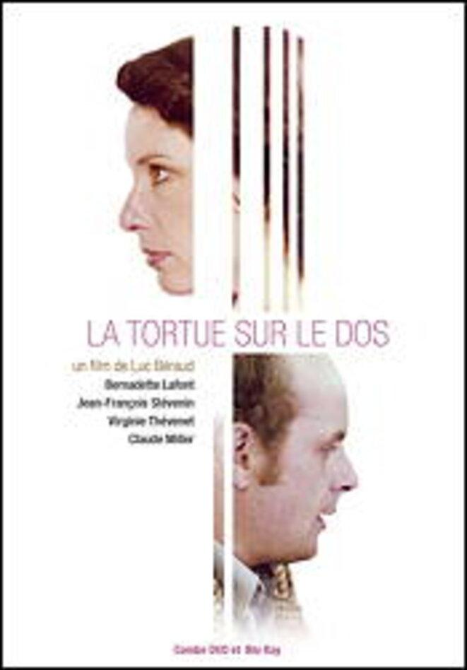 tortue-sur-dos-01