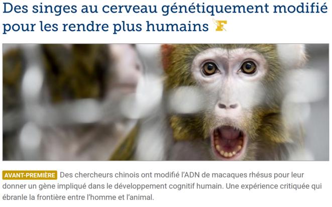 http://www.lefigaro.fr/sciences/des-singes-aux-cerveaux-humains-20190425