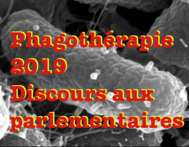 Phage SU10 sur bactérie © Mohammadali Khan Mirzaei