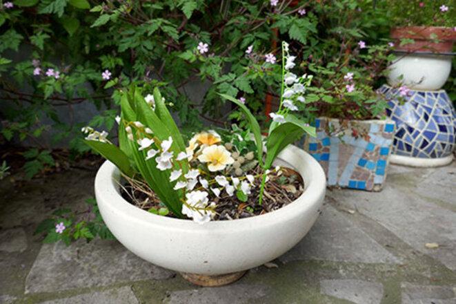 Combat de fleurs un 1er mai | Le Club de Mediapart