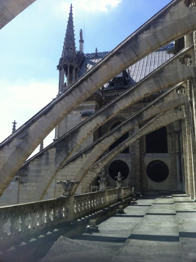 Arcs boutants de Notre Dame de Paris, 2015 © Elisa Querub