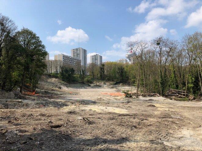 La forêt de Romainville (93) en partie défrichée par un projet de base de loisirs (JL).