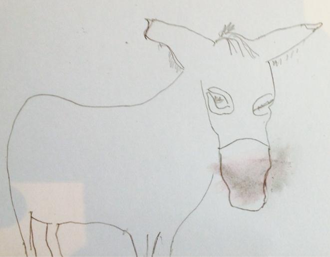 Donkeys © Yvan Najiels