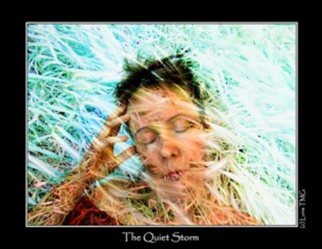 The Quiet Storm / La Tempête Paisible © Luna TMG