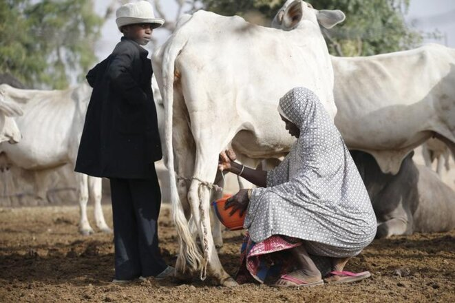 Au Nigeria, le 19 janvier 2016. © Reuters