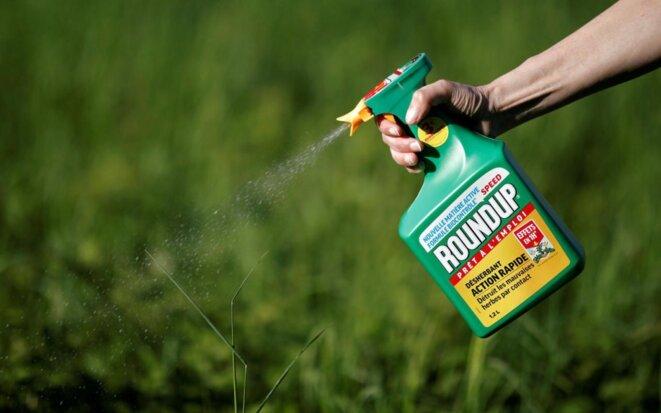Le Roundup de Monsanto, le désherbant le plus vendu au monde. © Reuters