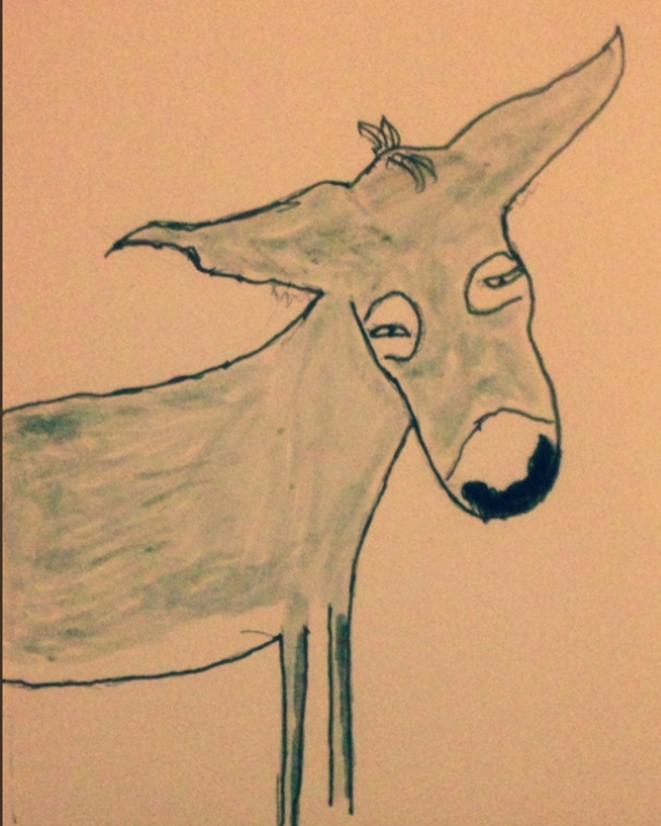 Un âne gris © Yvan Najiels