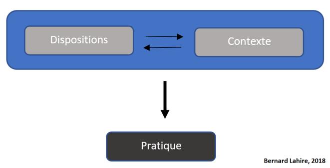 lahire-formule-interpretation-des-pratiques-2-1
