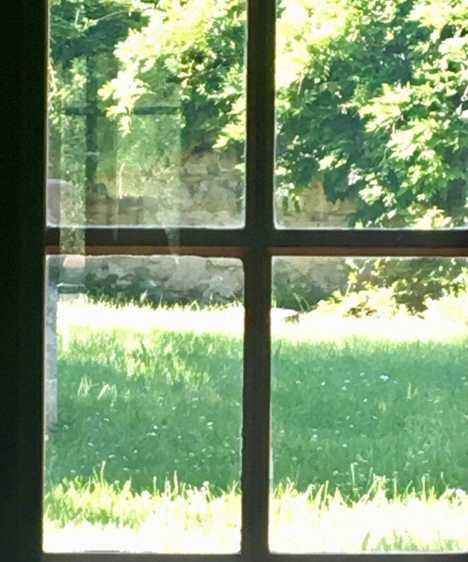 ©iPhone KT, 1 juin 2019, Vert tableau à travers le verre ...