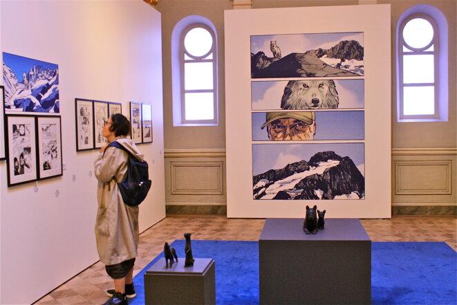 Toiles et planches de Rochette au musée de l'évêché à Grenoble © Patrice Morel (juin 2019)
