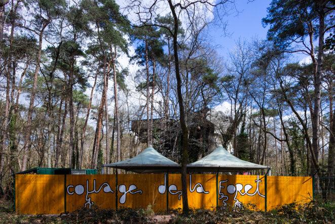 Babi Badalov, Collage de la Forêt, installation au Cyclop de Jean Tinguely © Babi Badalov, crédit photo: Régis