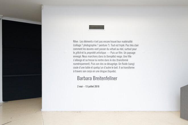 """Barbara Breitenfellner, Vue de l'exposition personnelle de Barbara Breitenfellner, """"Rêve : Les éléments n'ont pas encore trouvé leur matérialité..."""", Centre photographique d'Ile-de-France, Pontault-Combault, 2019. © Aurélien Mole"""