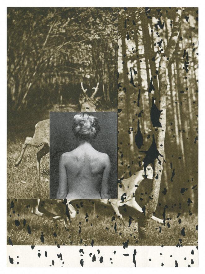 Barbara Breitenfellner, WVZ 109, 2009, collage et sérigraphie, collection Sabine Schirdewahn et Matthias Wagner K © Barbara Breitenfellner
