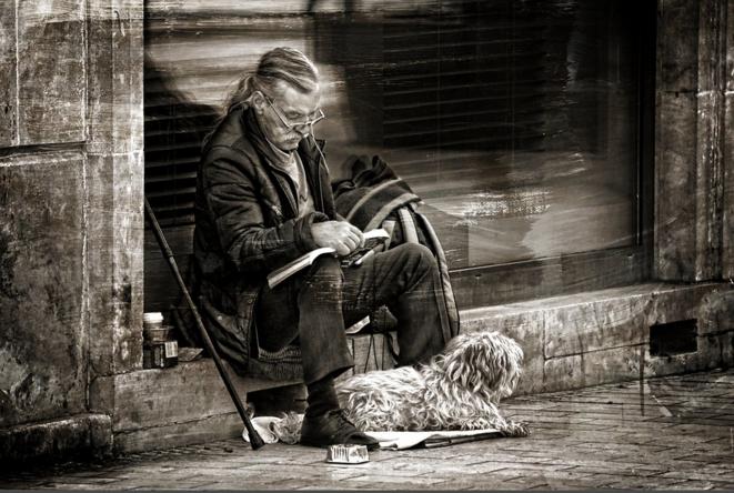 Homeless man reading and his dog © Luna TMG