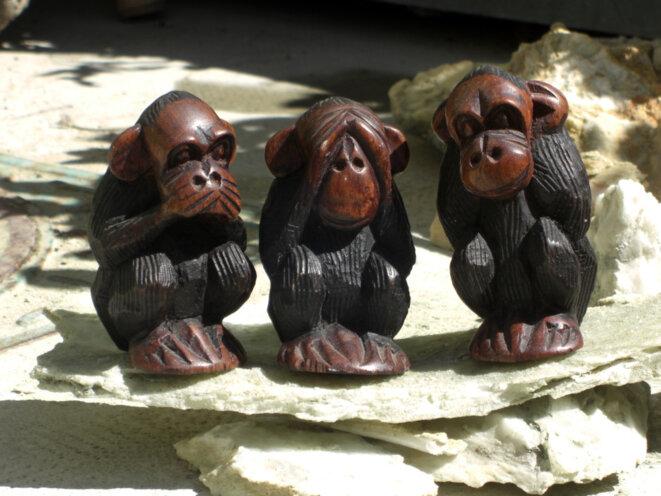 """""""Ne rien dire. Ne rien voir. Ne rien entendre"""". Une vieille histoire de singes ... ou... plutôt d'humains ! (photo E.G.) © eliette gensac"""