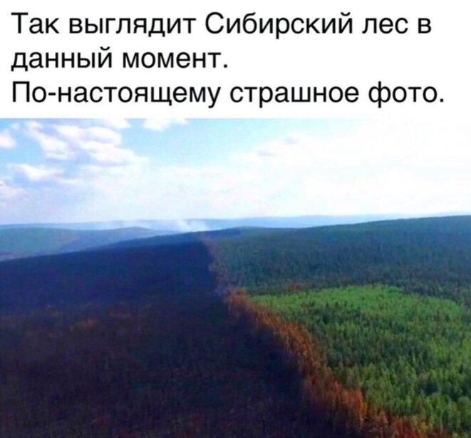 La Sibérie brûle dans l'indifférence.