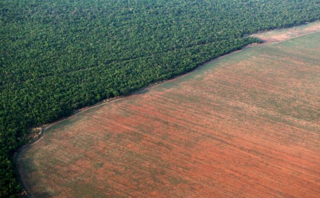 Un morceau de forêt amazonienne, dans l'État brésilien du Mato Grosso, rasé pour accueillir un champ de soja. © Reuters