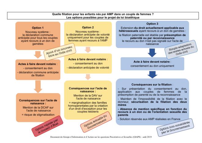 Les options possibles pour la filiation des enfants nés d'AMP dans les couples de femmes © GIAPS