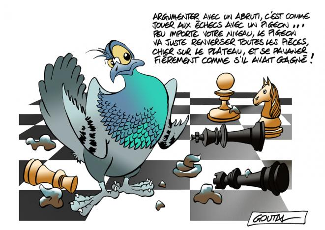 1-echec-mat-pigeon-ds