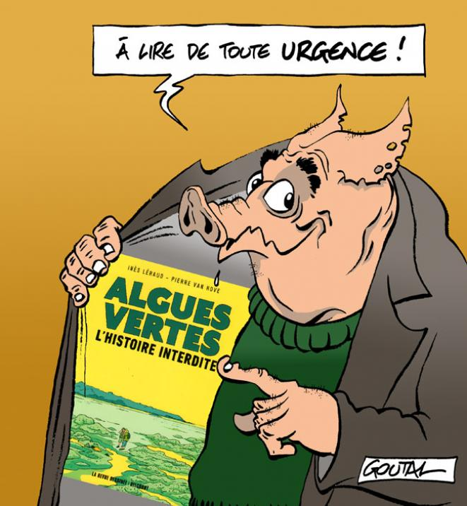 1-algues-vertes-pub-ds