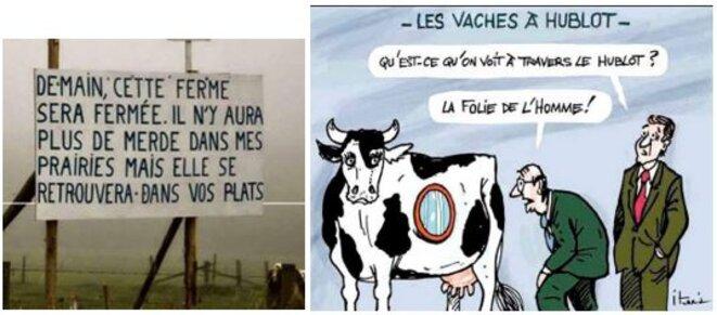 les-fermes-disparaissent-et-la-vaches-ont-un-hublot-la-folie-des-homo-sapiens