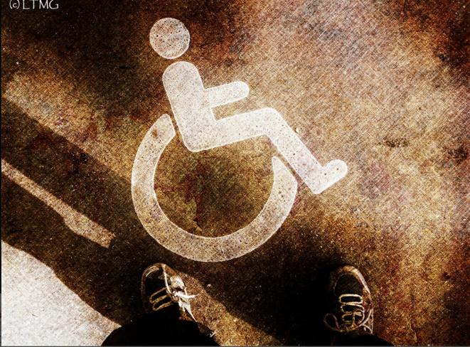 not only wheells © Luna TMG
