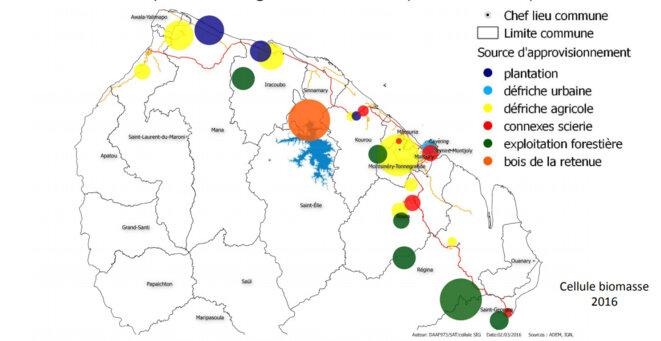 biomasse Guyane