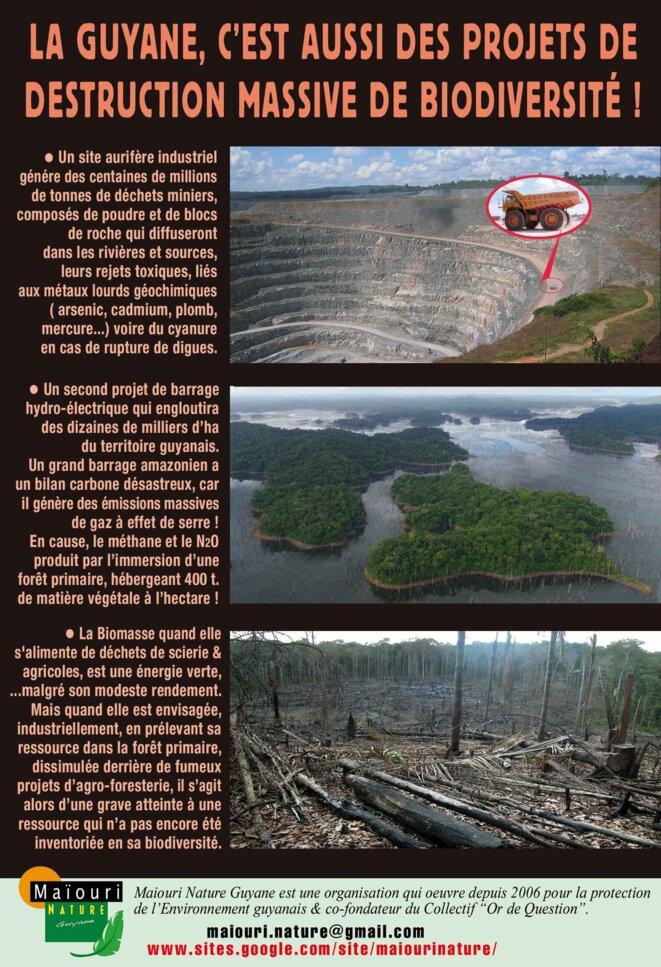 Les trois projets du gouvernement qui menacent l'Amazonie française © maiouri nature guyane