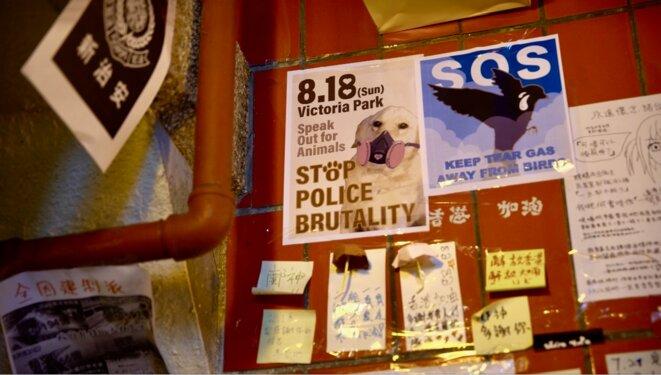 Une affiche appelant à manifestant contre les animaux domestiques touchés par les gaz lacrymogènes. Taipoo market le 27/08/2019. © Pierre Thomas