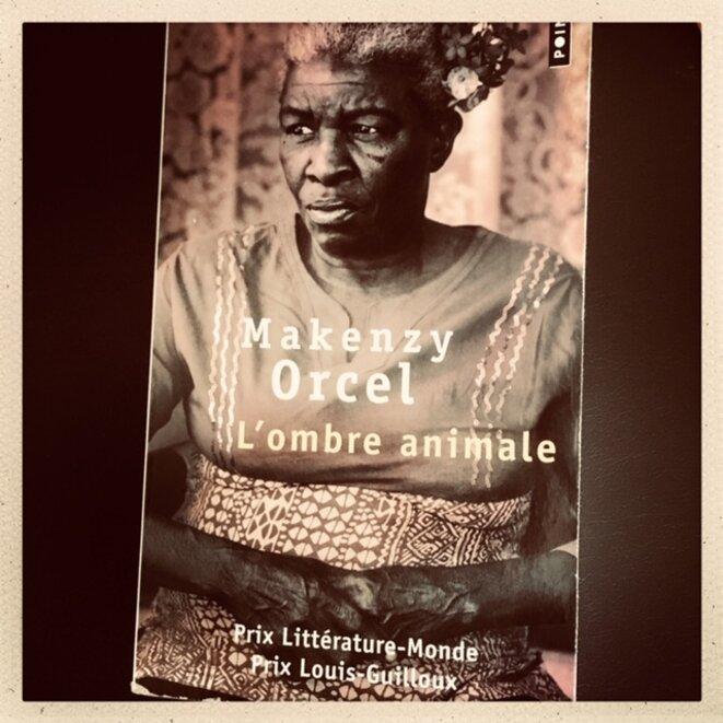 'L'Ombre Animale' (Makenzy Orcel) : regard d'outre-tombe sur Haïti l'infernale