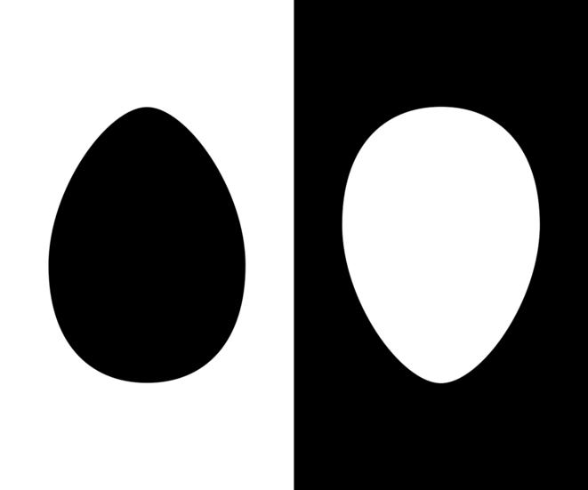 Deux images de genèse © Romain Cazé CC-BY
