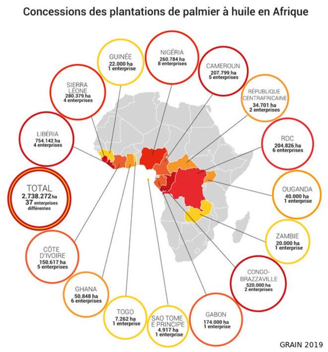 Concessions pour la production de palmier à huile en Afrique en 2019