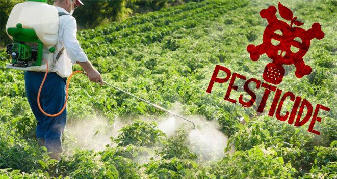 pesticide-danger-cancer