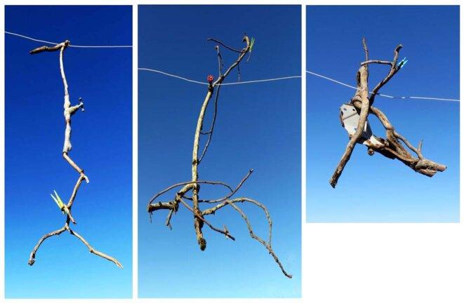 Jean Maureille, vues de l'installation « Linge éphémère », branches de figuier et de tilleul avec objets divers, 2019