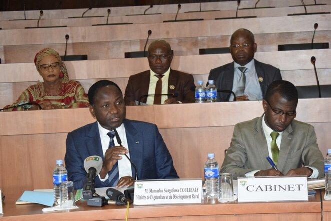 Le Ministre de l'Agriculture et du Développement Rural, Mamadou Sangafowa, représentant le Président de la République © Direction de l'Information et de la Communication de l'Assemblée Nationale