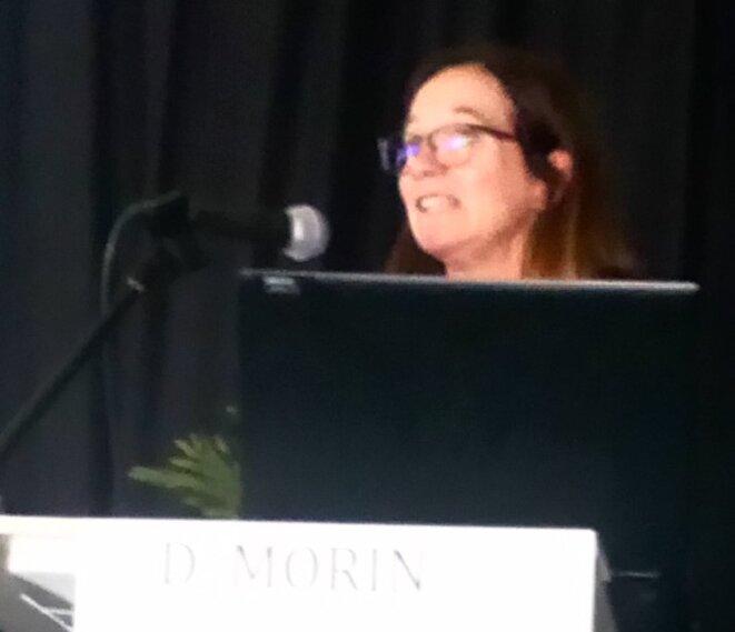 Diane Morin à l'Université d'Automne de l'ARAPI - octobre 2019
