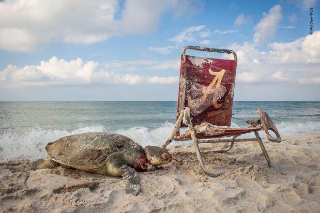 Beach waste © Matthew Ware