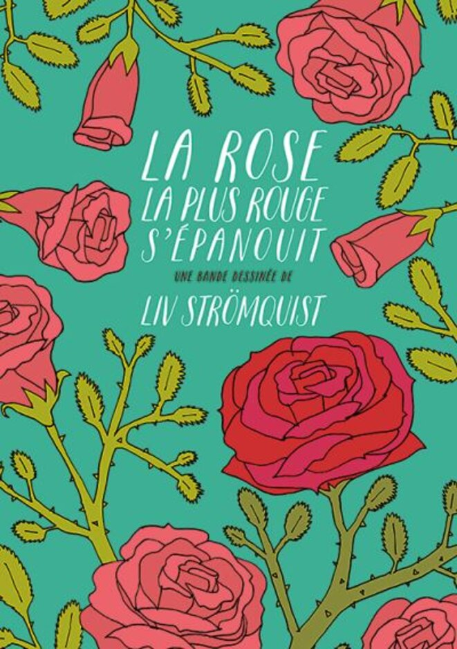 la-rose-la-plus-rouge-s-epanouit