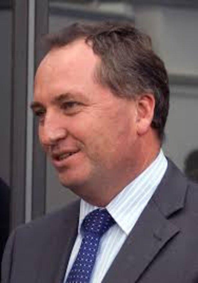 Barnaby Joyce, Parti National australien