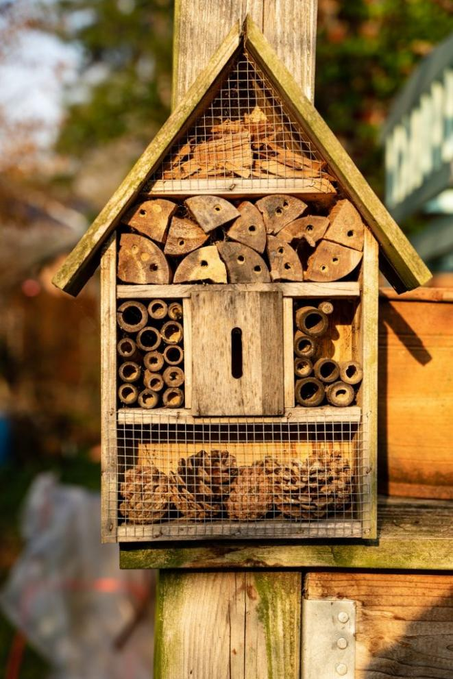 insect-hotel-4110513-1920-683x1024