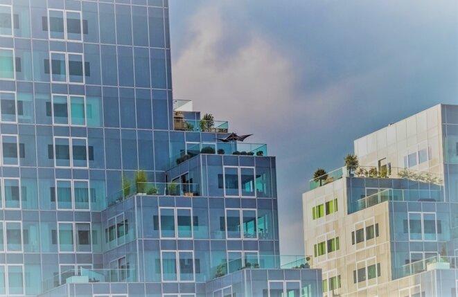 Jimmy Parat : la digitalisation du secteur immobilier