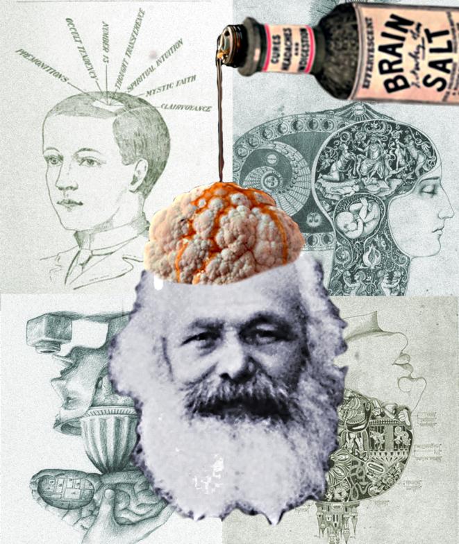 Les images de son cerveau auront beau être des plus fascinantes, l'homme neuronal aura toujours pour horizon normatif indépassable l'homo oeconomicus. © Benjamin Royer