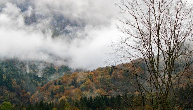 Massif de la Chartreuse en tenue d'automne © Patrice Morel (1er novembre 2019)