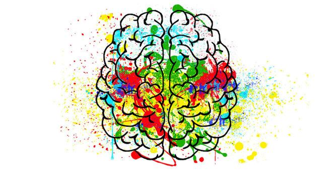 brain-2062048-1920-web