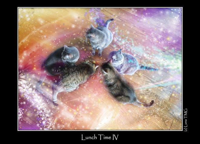 Lunch Time IV © Luna TMG