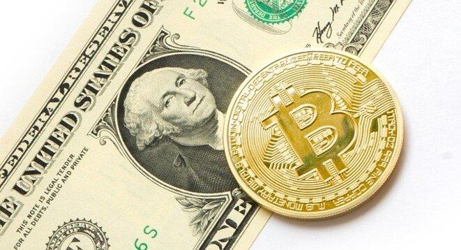 Bitcoin VS Dollar © Tom Bark
